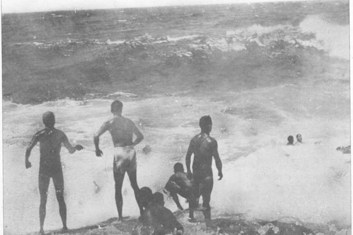 Whale Beach rocks rescue